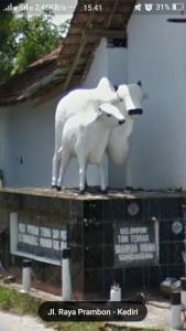 Patung Sapi Sonoageng, pokestop bagi para trainer