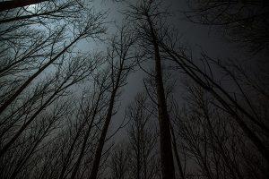Kegelapan Yang Menyeramkan