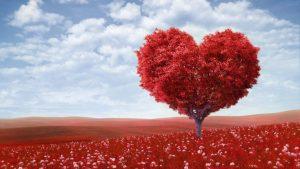 Kisah cinta bang Ocit dan munaroh